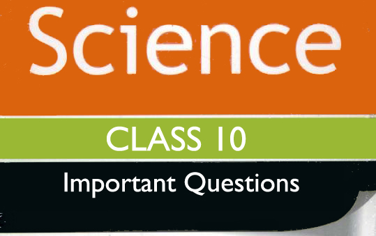 Important Questions for Class 10 Science CBSE Chapter Wise