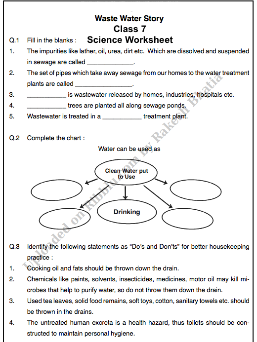 Free Science Worksheet for Class 7 in PDF
